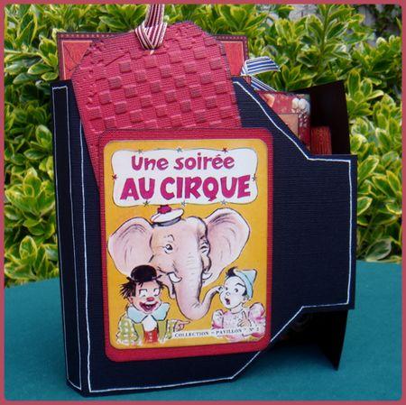 Le_cirque__2_
