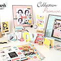 Nouvelle collection swirlcards