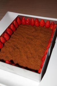 d_lice_fraises2