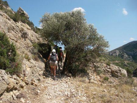 Sentier cathare 2012 (61)