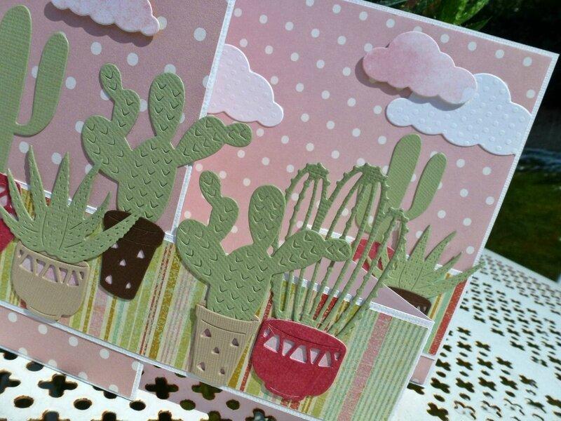 Carte-cactus5