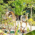 le jardin des graines