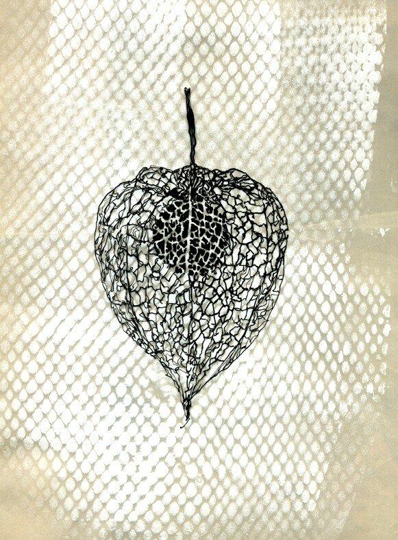 Une cage d 39 amour ferm e une cage d 39 amour ouverte - Fruit cage d amour ...