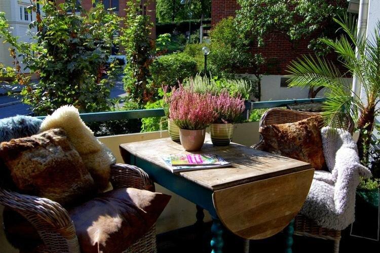 décoration-balcon-automne-bruyère-erica-coussins-couvertures-table-bois-massif-fauteuils-osier