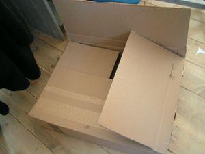 33_PÂQUES_Mobiloeuf carton