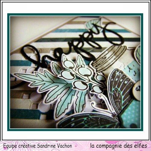 Sandrine VACHON dt LCDE (5)