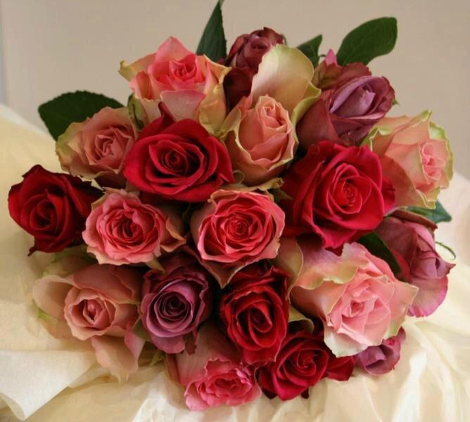 Le sens des fleurs