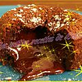 Méga coulant choco-marron