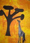 afrique_girafe
