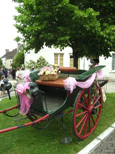 festival roses 2008 169
