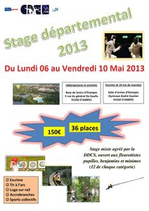Affiche Stage départemental 2013