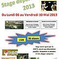 Stage départemental fleuret
