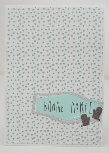 carte combo janvier 2016 forum little scrap