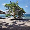 TAHA'A (Île Vanille) 10 - Motu pique nique 1