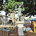 Ouida : porte du non retour