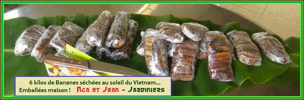 PAQUETS BANANES SECHES SOLEIL (3)