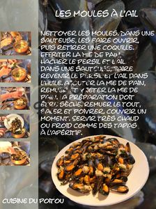 moules_copie