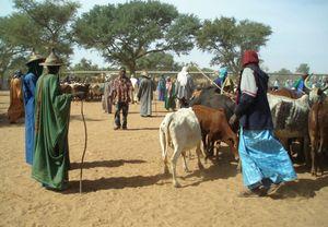 Peuls vert et bleu FATOMA Mali