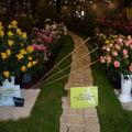 Floralies 107
