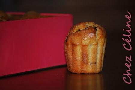 muffins_choco_zeste