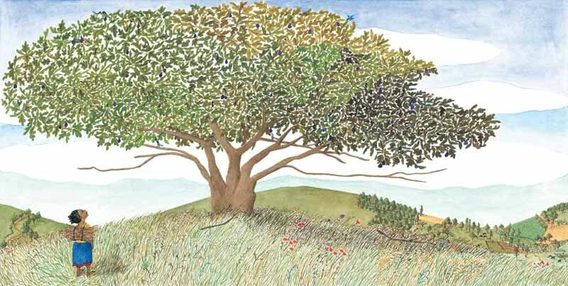 arboles-en-kenia