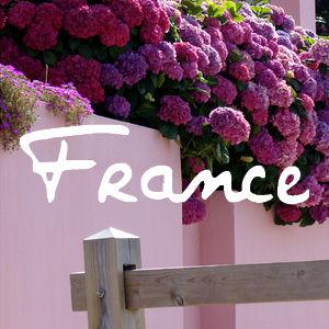 couv album france
