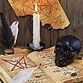 Le cahier mystique du marabout vodounnon