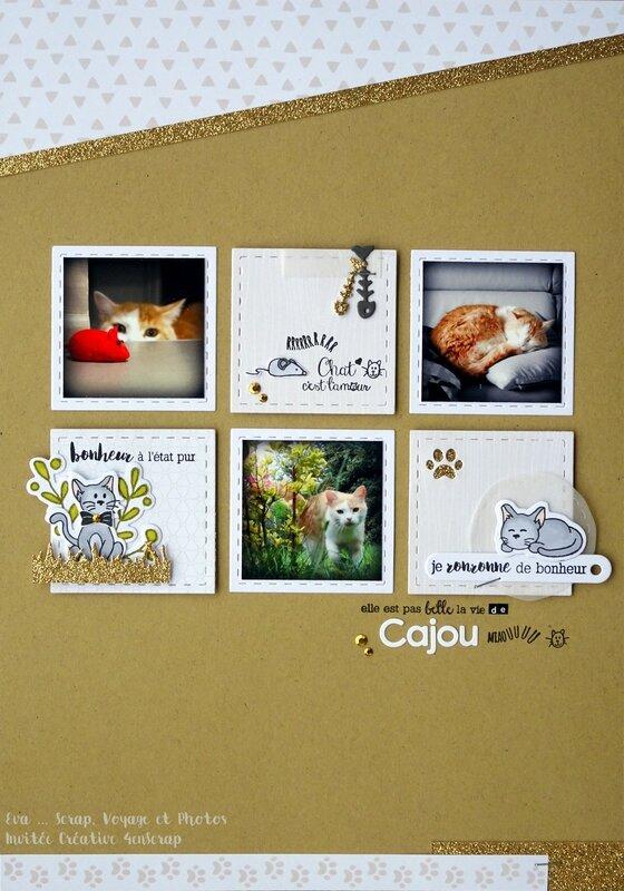 J6_page Cajou (1)