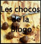 chocoblogo