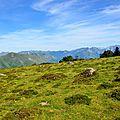 La vallée d'Aspe et le Layens depuis le plateau du Soulaing...