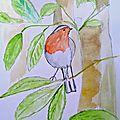 peintures-aquarelle-originale-le-rouge-gorge-19134513-bild7888-edited13b6-b2629_big