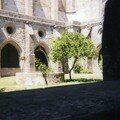Evora - cathdrale 1