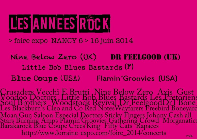 AFFICHE les ANNEES ROCK NANCY2014