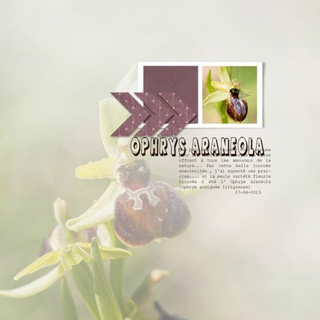 page Soco_Template 42
