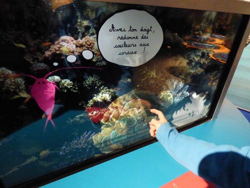 8 Aquarium Porte Dorée (10)