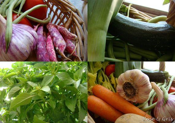 légumes de la soupe au pistou détails