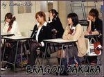 dragonzakura