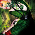 poison-ivy-marvel-vert-photomontage-caen-freelance-pin-up