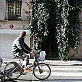 vélib', passage pieton, végétation_4463