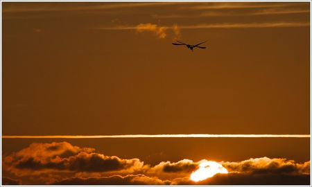 soleil_couchant_ombres_croisees_herons_MS_040808