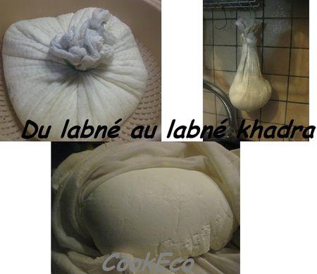 Labn__bizayt__gouttage_