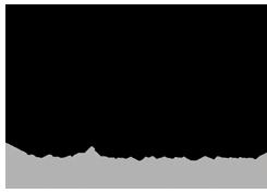 logo-BlackOPS-header