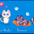 La famille chats