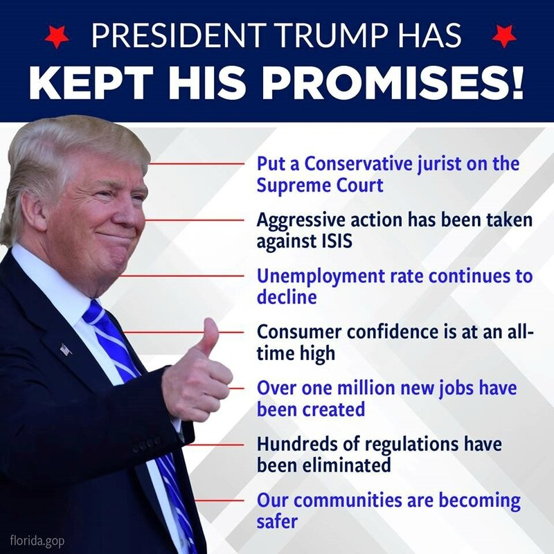 Donald Trump's first year accomplishments
