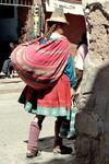 Caille_de_Cusco