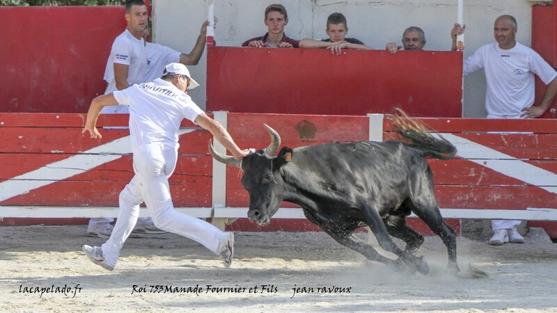 52 - photos maussane le 21 06 201420140624001622