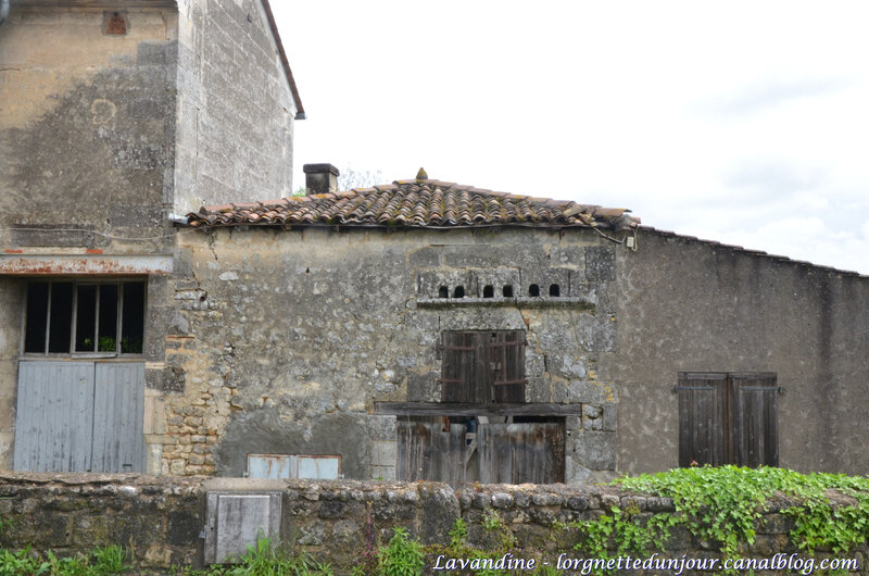 chateauneuf (12)