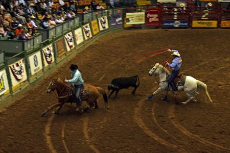 Rodeo_19