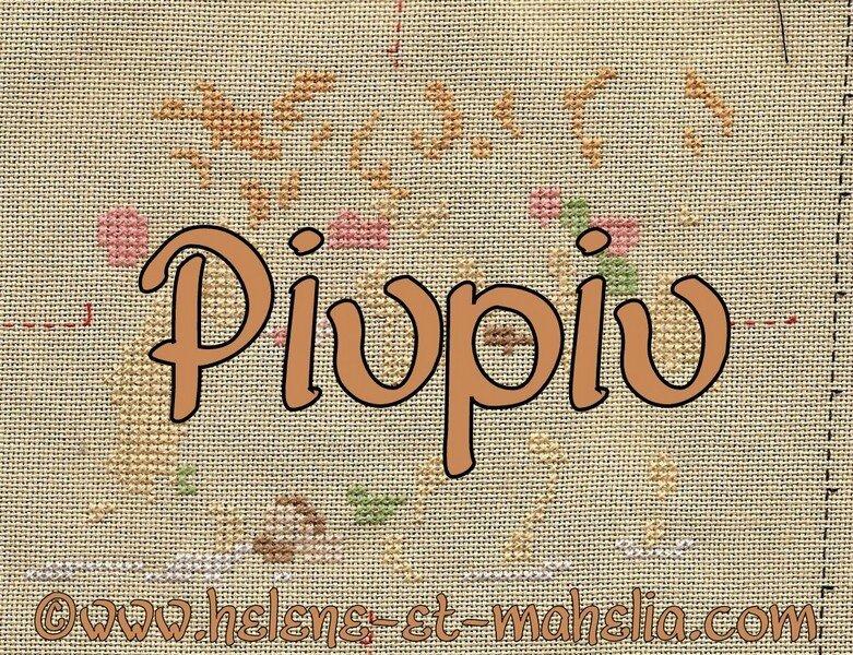 piupiu QB_saldec13_5