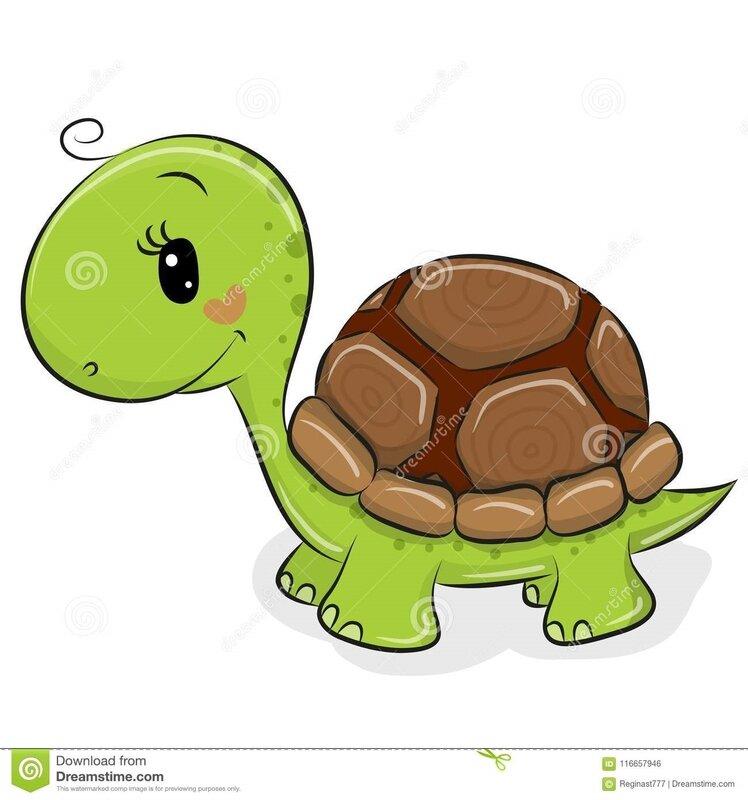 tortue-mignonne-de-bande-dessinée-sur-un-fond-blanc-116657946
